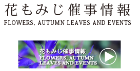 花もみじ催事情報 Flowers, autumn leaves and events